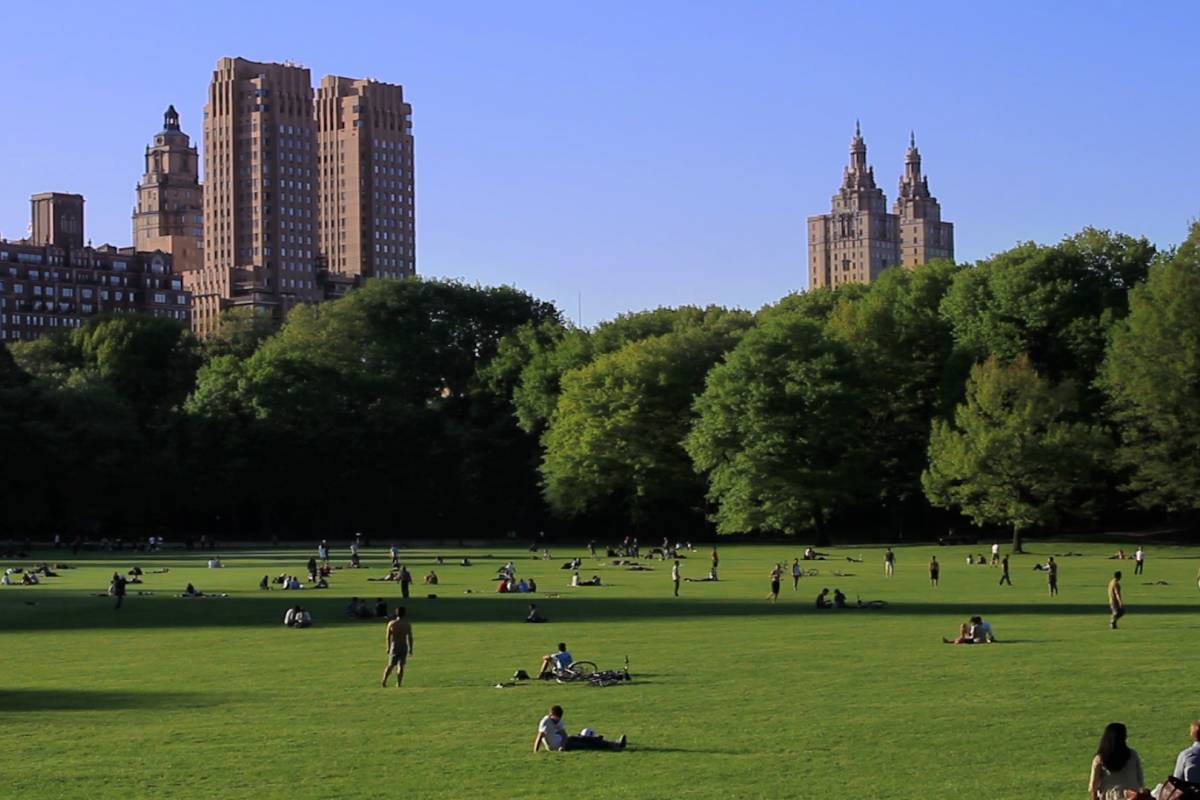 People exercising in Central Park